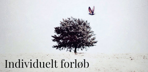 Individuel_forloeb