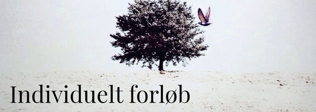 Individuel_forloeb_slider